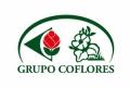 Coflores S.L.